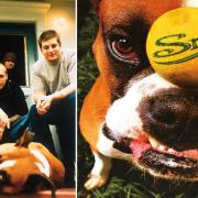 Snot-banda-disco-get-some-1998